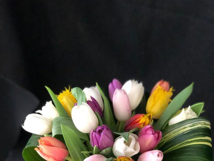 Tmx Img E13741 51 1307955 157412481043068 Epping, NH wedding florist