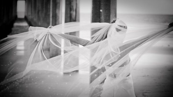 Tmx 1319002888316 Veil Newport Beach wedding videography