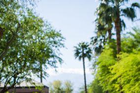 Rancho Mirage Estate