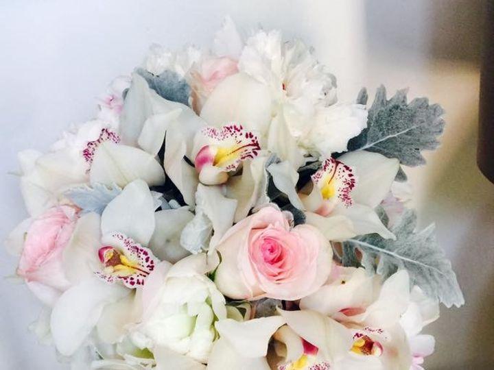 Tmx 1507659488359 185278091528677780499162726817128456467239n Braintree, MA wedding florist