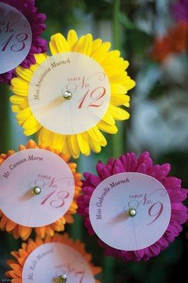 Daisy Seating Cards & Display