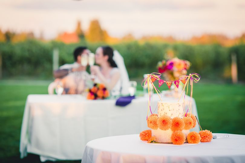 weddingwire photos 113