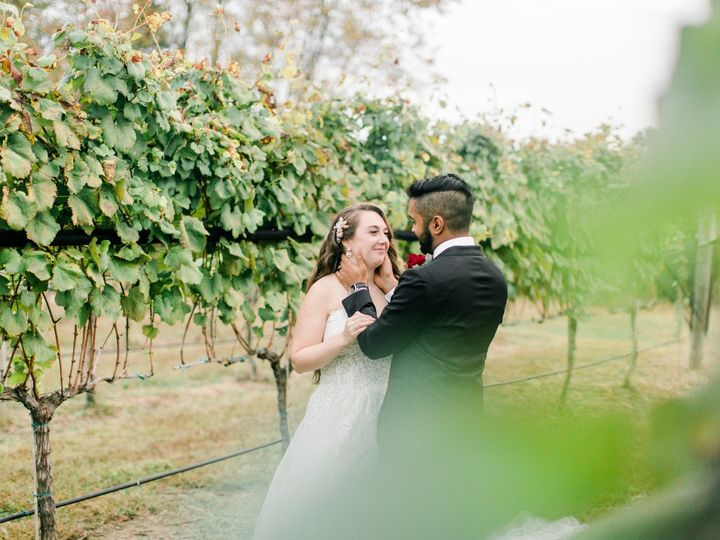 Tmx Williamsburg Winery Fall Wedding Virginia Dc Photographer Angelika Johns Photography 0212 51 40165 157652895790030 Williamsburg, VA wedding venue