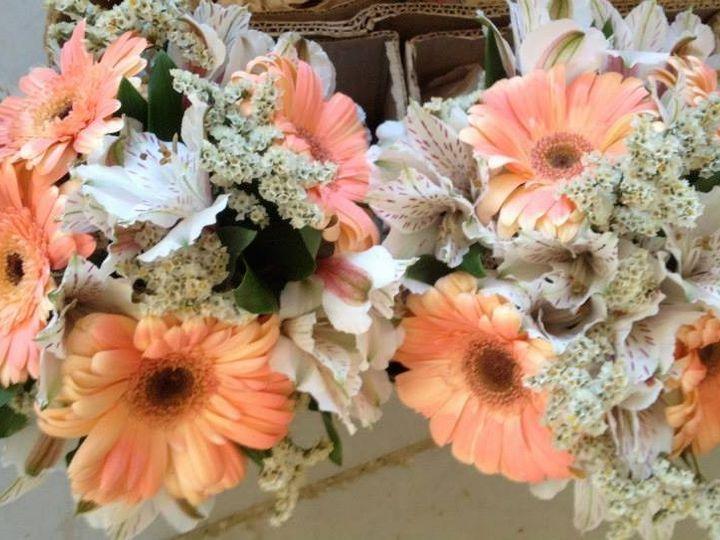 Tmx 1456498442618 105742556933400374116448966402279685923453n South Lyon wedding rental
