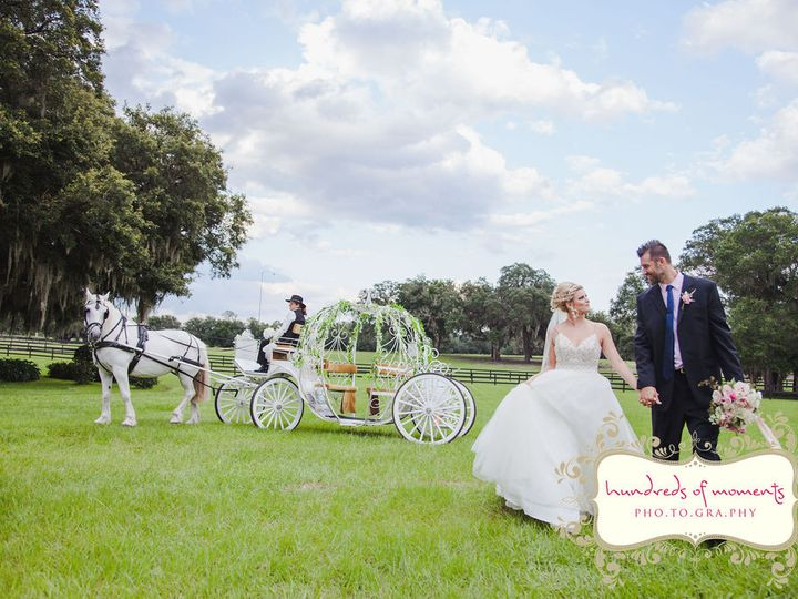 Tmx Hundredsofmoments200616 8318 51 1989165 160053520070954 Clermont, FL wedding planner