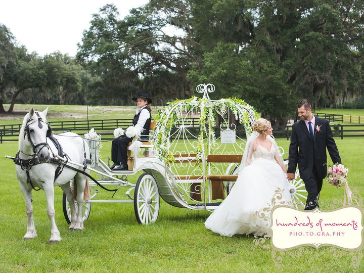 Tmx Hundredsofmoments200616 8406 51 1989165 160053520062618 Clermont, FL wedding planner