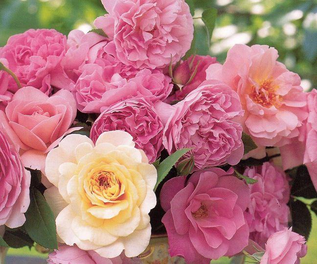 flowersforcar