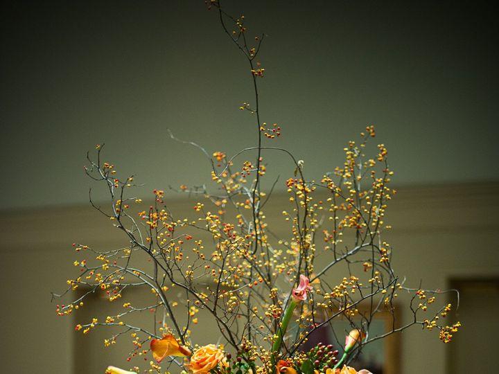 Tmx 1397079525588 20101106 033 Baltimore wedding florist