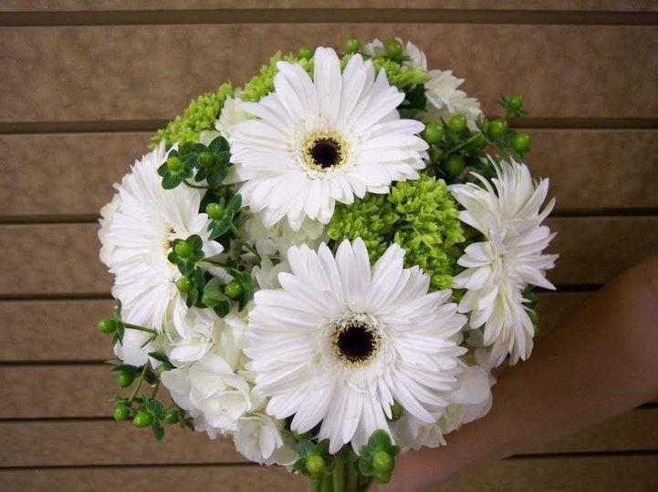 White gerbera daisies.