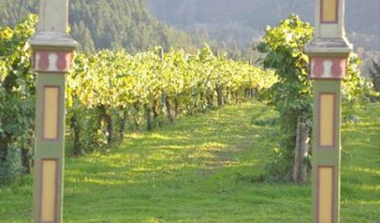 Rebecca's Vineyard