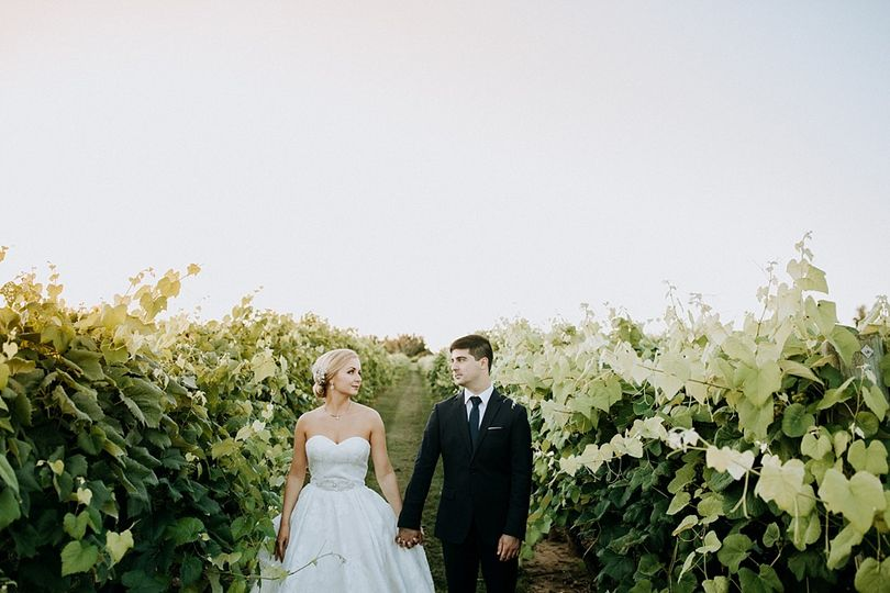 Bride and groom at the vineyard