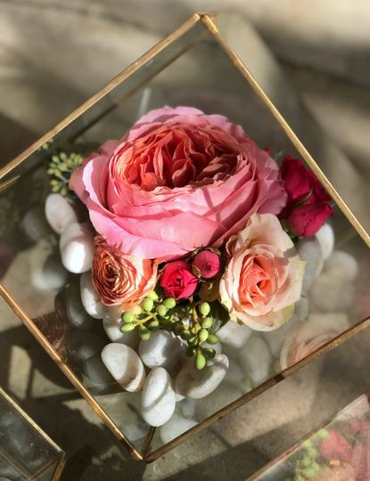 Peony geo terrarium - Royal Bee Florals and Events