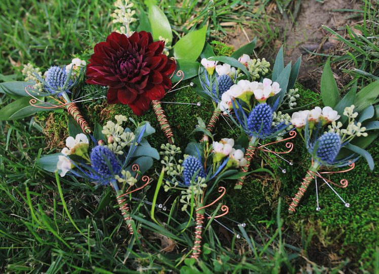 Blue thistle and burgundy dahlia boutonnieres - royal bee florals and events