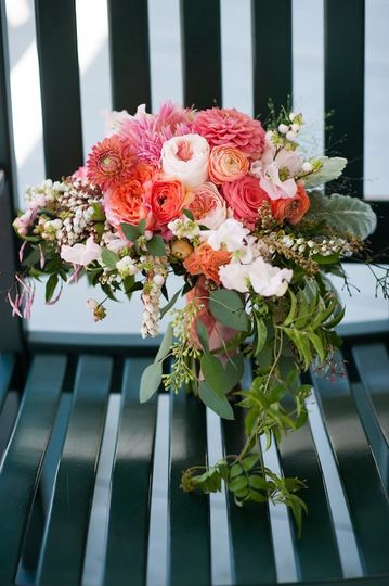 cymbidium floral