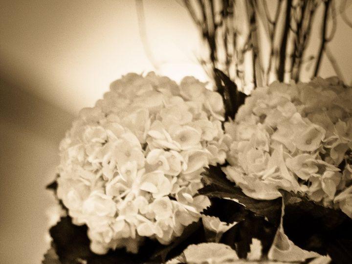 Tmx 1480377505504 Flowers 15 York wedding florist