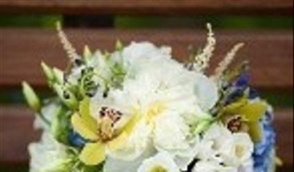 Love Flowers Shenandoah 1