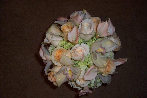 Tmx 1299097047959 208 Milwaukee wedding florist