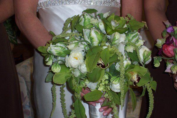 Tmx 1299097176896 231 Milwaukee wedding florist