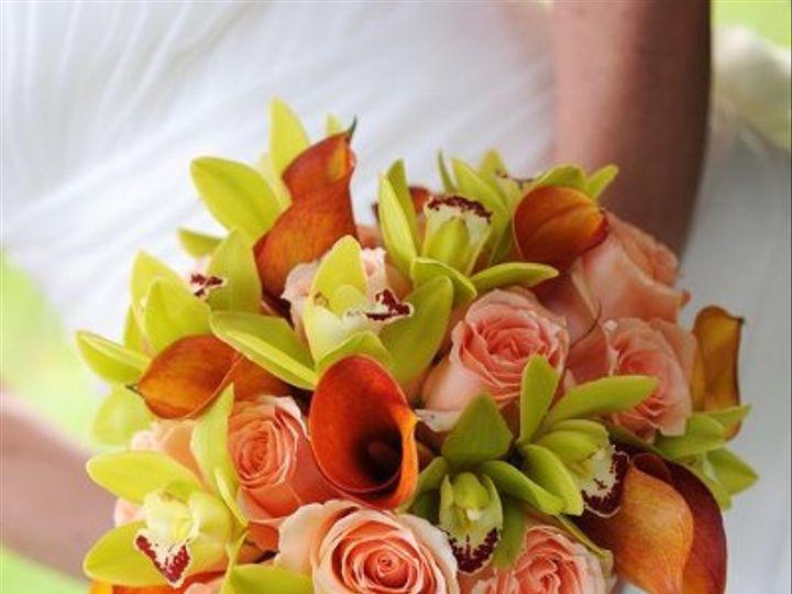 Tmx 1299097284865 DSC85191 Milwaukee wedding florist