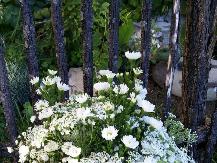 Tmx 1469118821164 P2 Milwaukee wedding florist