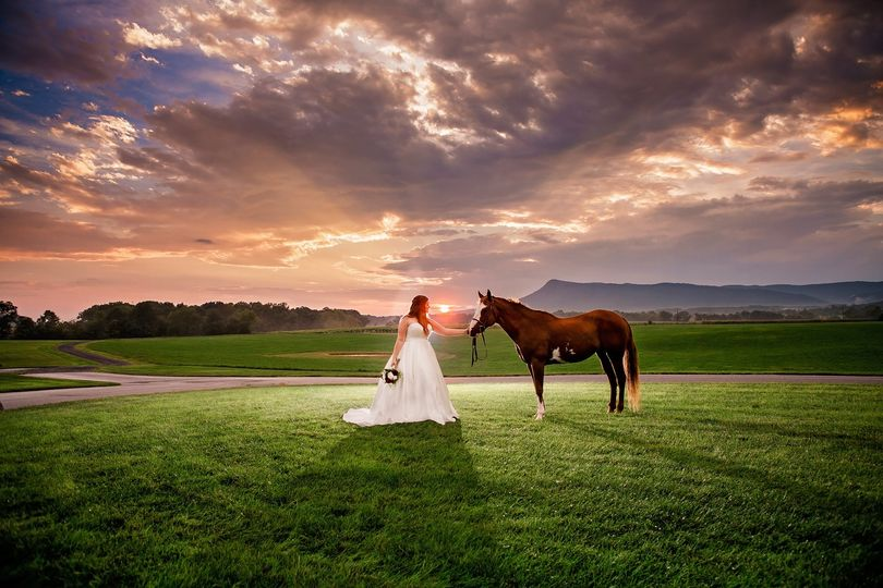 virginia vineyard sunset wedding 51 910465