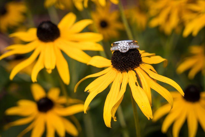 zavagno wedding 462 51 1050465 v1