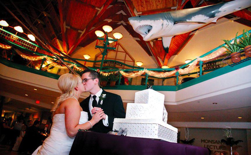 Saint Louis Zoo Reviews Amp Ratings Wedding Ceremony Amp Reception Venue Missouri