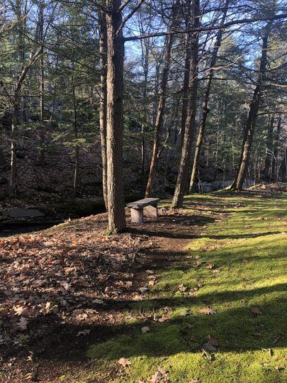 Stone bench overlooking stream