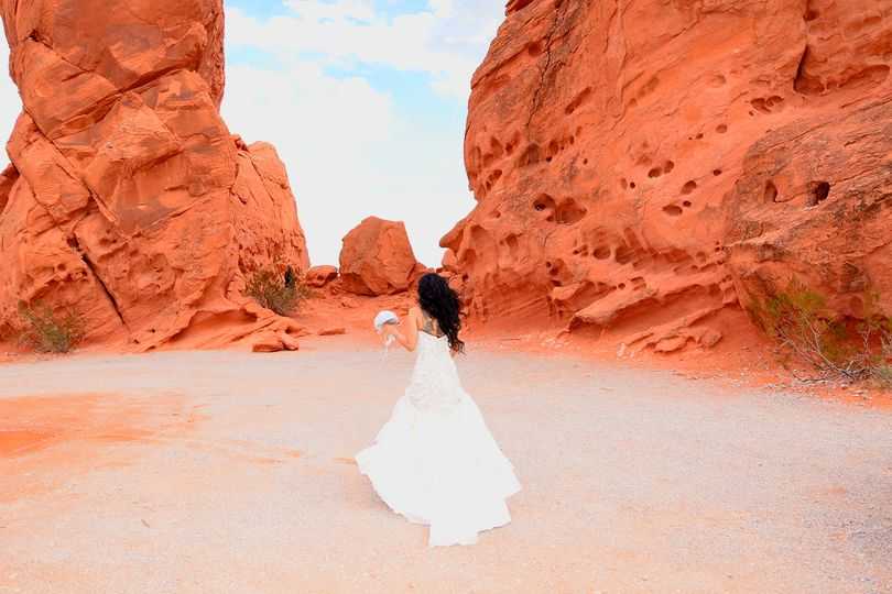 Valley Of Fire Trash the Dress