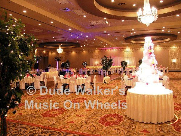 Minneapolis Wedding DJ Dude Walker - Wedding Lighting| dudewalker.org