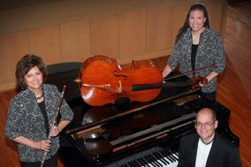Silver & Strings Trio