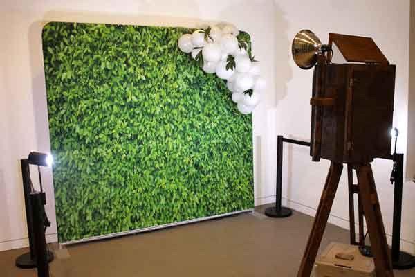 Tmx Brass Greenery Wedding Mini Red Carpet Photo Booth 51 663765 1573152283 Lenexa wedding rental