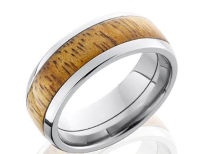 Tmx 1362784710559 LBHW8D15JOBILLOTitanium Ann Arbor wedding jewelry
