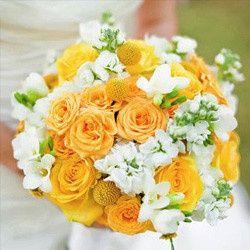 Tmx 1379996783546 Artistrysplash8 Tampa, Florida wedding florist