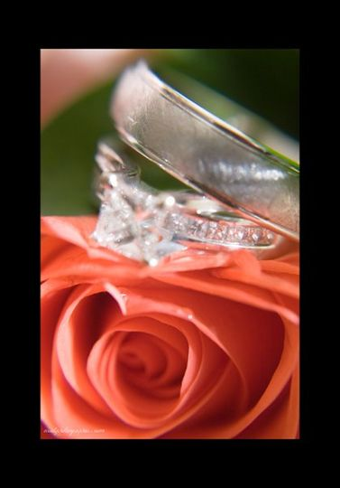 Rings and rose.