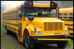 Emma Bus Line Co. LLC image