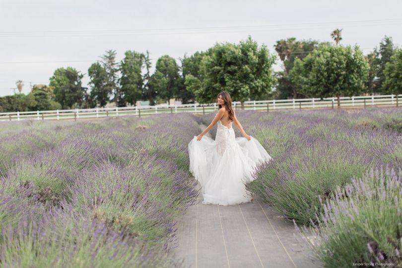 lavender love 148