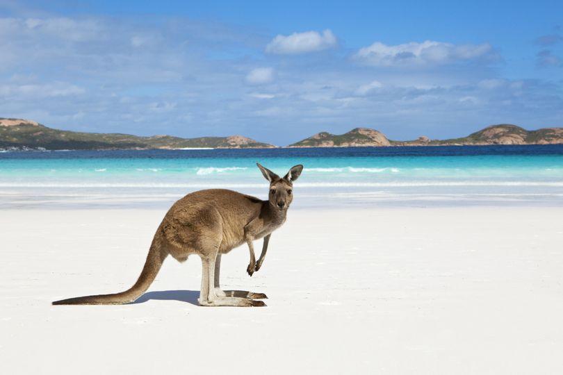 The beaches of Australia