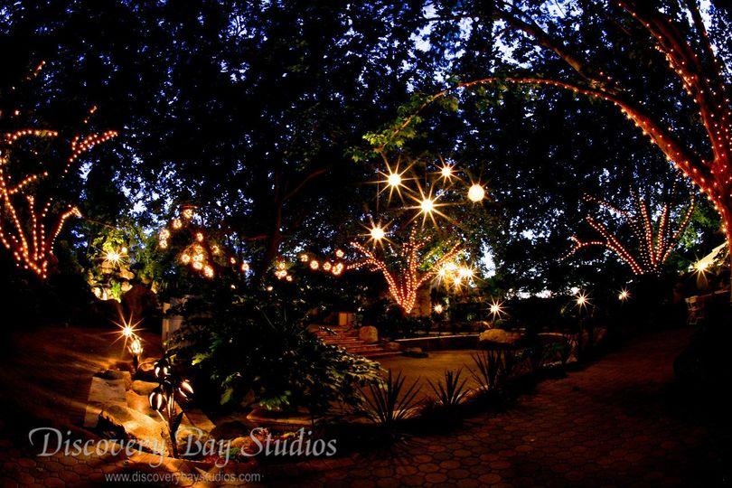 Bridal falls lights