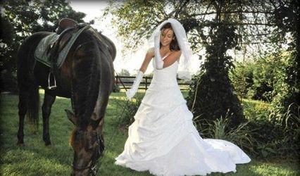 Starlyn Weddings 1