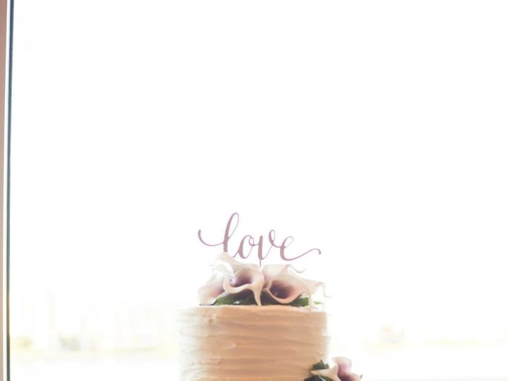 Tmx Img 1166 51 1052075 Palm Harbor, FL wedding cake