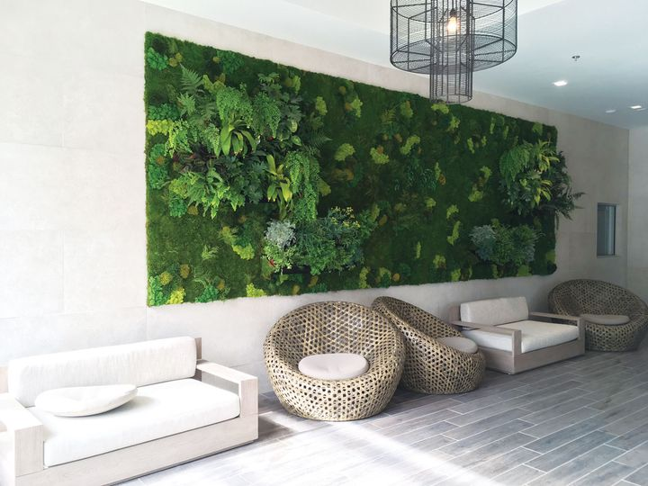 Tmx Living Wall And Preserved Moss Lincoln Web 01 1 51 1993075 160287636950057 Fallbrook, CA wedding eventproduction