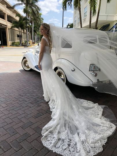 Bridal gown and veil