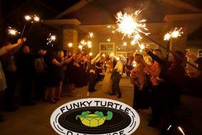 Funky Turtle DJ Service