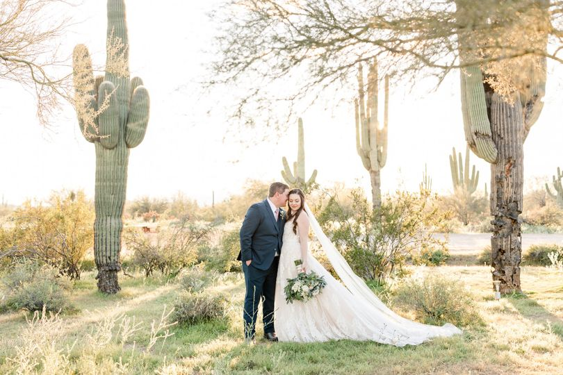 Stephen & Melissa Photography