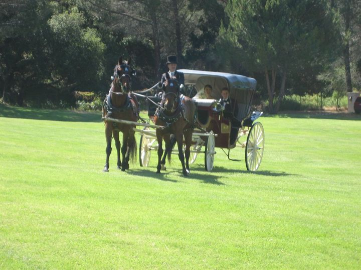 Bride and Groom arrived at the Ceremony in the formal gardens by horse-drawn carriage