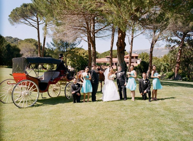 Bride, groom and the wedding party with their carriage and the Chateau in the background