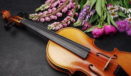 Elegance by Violin 1