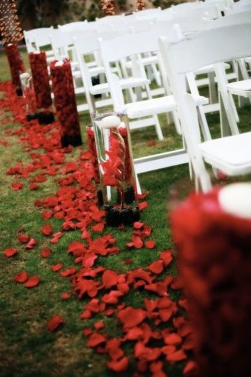 Luscious red petals give this ceremony aisle a rich feel. More petals fill the clear glass cylinders...