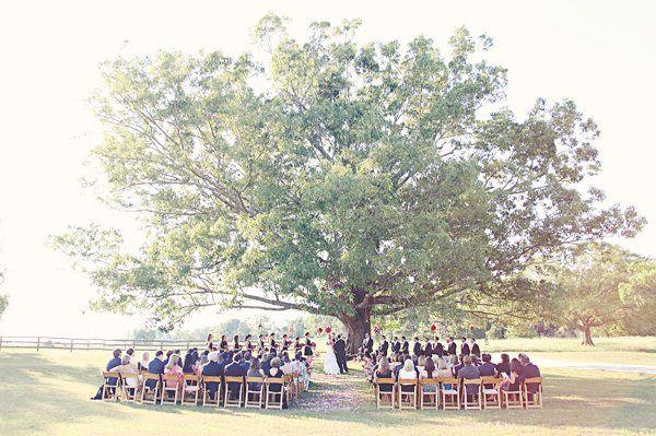 WeddingWebsite059